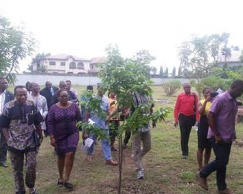 Association of Professional Bodies of Nigeria – Delta State Chapter tour the ATED centre