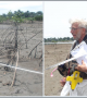 BMI Measures Elevations to Track Variations in Mangrove Growth